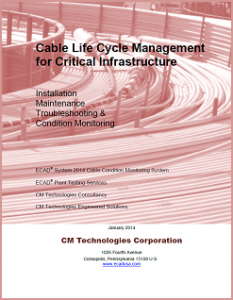 ECAD for Critical Infrastructure Whitepaper